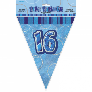 Birthday 16th Bunting Blue/Silver