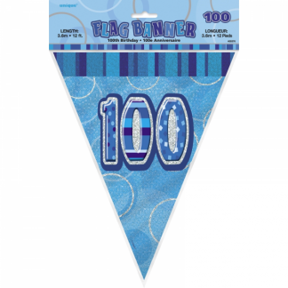 Birthday 100th Bunting Blue/Silver