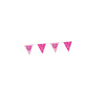 Birthday Girl Party Bunting