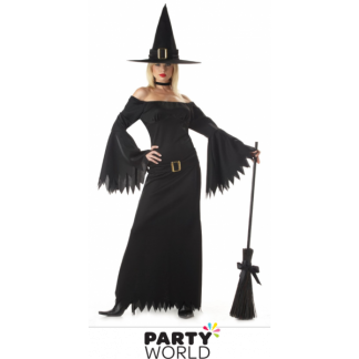Elegant Ladies Witch Costume