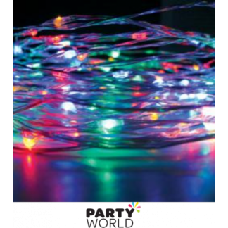 Silver Wire Seed Lights - Multicoloured LED (2 Metres)