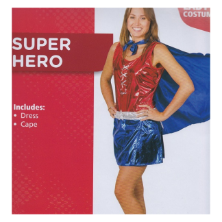 Super Hero Lady's Costume