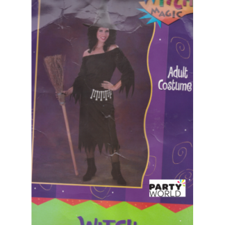 Witch Magic Costume (one size)