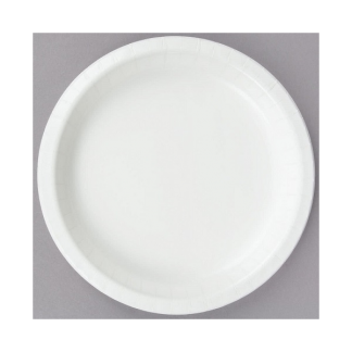 White Paper Plates 9inch (24)