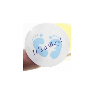 Its A Boy Baby Shower Mini Stickers (100)