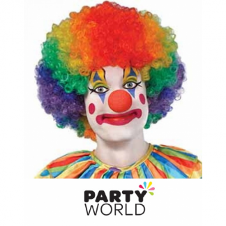 Multicoloured Afro / Clown Wig