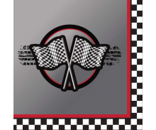 Race Checker & Motor Sport