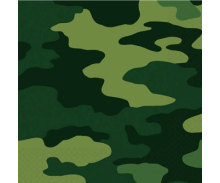 Camouflage / Army