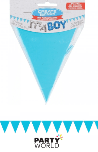 baby blue pennant banner