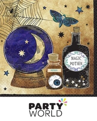 Spooks And Spells Party Paper Luncheon Napkins (16)