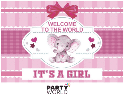 welcome to the world its a girl backdrop